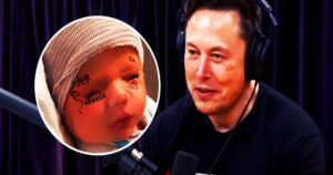 """Read more about the article Elon Musk: Neuralink Will Do Human Brain Implant in """"Less Than a Year"""""""