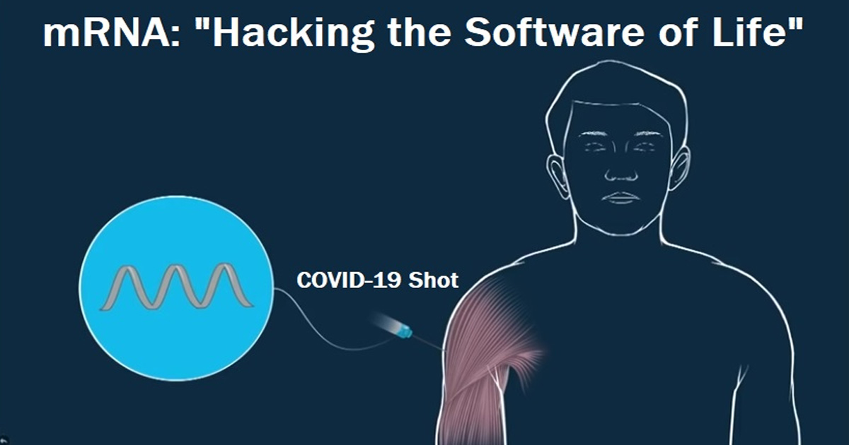 Moderna's Top Scientist On MRNA Technology In COVID Shots: 'We Are Actually Hacking The Software Of Life'