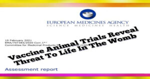 EMA Pfizer Documents on Experimental COVID-19 mRNA Shots Reveal Animal Studies were Conducted during Trials – Risks to Pregnancy being Concealed but Verified by VAERS Data