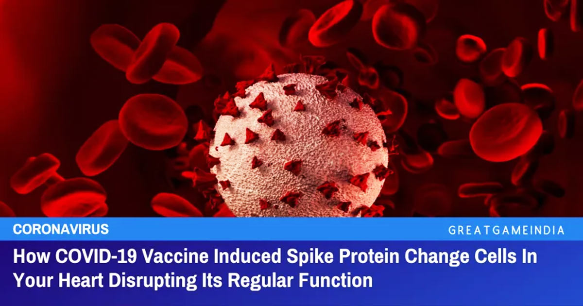 You are currently viewing How COVID-19 Vaccine Induced Spike Protein Change Cells In Your Heart Disrupting Its Regular Function