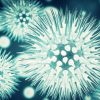 Study: Chlorine Dioxide blocks spike proteins from Sars-Cov-2
